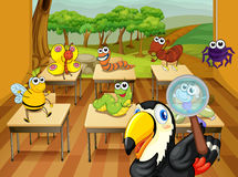Animals in classroom Royalty Free Stock Photography
