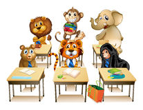 Animals in classroom Stock Photography