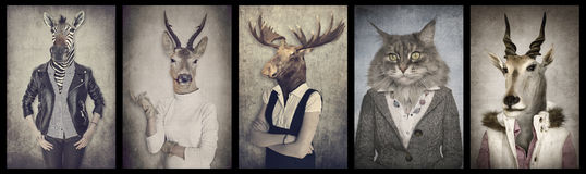 Animals in clothes. Concept graphic in vintage style. Stock Images