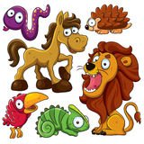 Animals Collection Royalty Free Stock Image