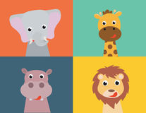 Animals Collection Royalty Free Stock Photo