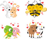 Animals couples in love. Animals in love  illustration Stock Images