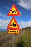 Animals Crossing Royalty Free Stock Photography