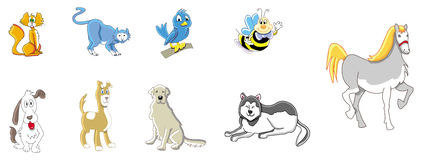Animals cute collection Royalty Free Stock Photo