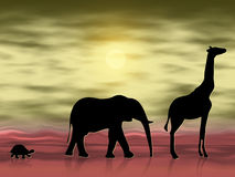 Animals in the desert. Silhouettes of three animals wandering in the desert Royalty Free Stock Images