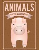 Animals design. Animals  grafic design , vector illustration Royalty Free Stock Photo