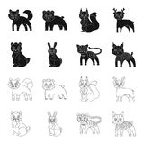 Animals, domestic, wild and other web icon in black,outline style. Zoo, toys, children, icons in set collection. Animals, domestic, wild and other  icon in Royalty Free Stock Photos