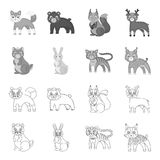 Animals, domestic, wild and other web icon in outline,monochrome style. Zoo, toys, children, icons in set collection. Animals, domestic, wild and other  icon in Royalty Free Stock Images