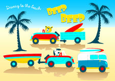 Animals driving to the beach beep beep Stock Photos