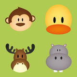 Animals face Stock Photography
