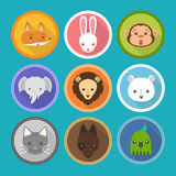Animals face Stock Images