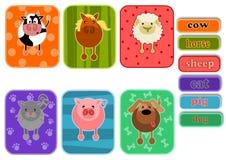 Animals from farm Stock Photos