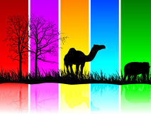Animals on field. Animals isolated on multicolor background Royalty Free Stock Photography