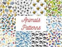 Animals and fishes seamless background set. Animals seamless backgrounds set. Wallpapers with pattern of zoo camel, lion, flamingo, rhinoceros, hippopotamus Stock Images