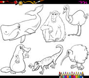 Animals and food coloring page Royalty Free Stock Photography
