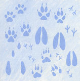 Animals footprints in the snow Stock Images