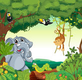 Animals in the forest. Illustration of a forest scene with different animals Royalty Free Stock Images