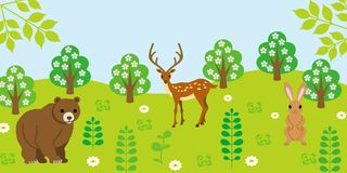 Animals in forest Stock Photo