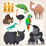 Animals fram african savanah. Colorful cartoon animals from tropical region and african desserts Royalty Free Stock Image