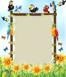 Animals and frame. Wooden frame with many birds and flowers background Royalty Free Stock Photo