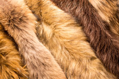 Animals fur Stock Photos