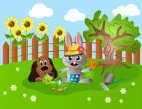 Animals gardening Stock Image