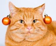 Animals. Ginger cat white isolated, tree toys!. Wonderful ginger cat, has yellow eyes, tree toys balls . New Year holiday card. Winter Christmas background Royalty Free Stock Image