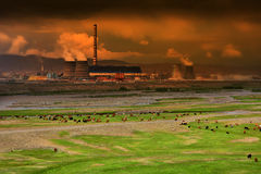 Animals grazing next to power plant Stock Photography