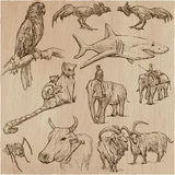 Animals - an hand drawn vector pack Stock Photo