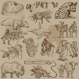Animals - Hand drawn vector pack Stock Photos