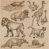 Animals - An hand drawn vector pack, line art Stock Images