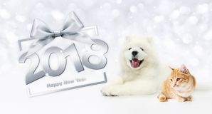 Animals happy new year concept, cat and dog with gift box frame. And silver satin ribbon bow Stock Photography