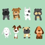 Dogs vector collection design royalty free illustration