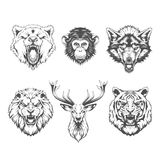 Animals heads. Line art Royalty Free Stock Photo