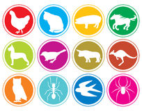 Animals icons buttons vector illustration