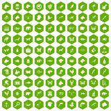 100 animals icons hexagon green. 100 animals icons set in green hexagon isolated vector illustration Stock Photo