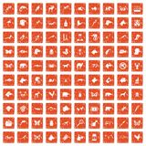 100 animals icons set grunge orange. 100 animals icons set in grunge style orange color isolated on white background vector illustration Royalty Free Stock Images