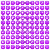 100 animals icons set purple. 100 animals icons set in purple circle isolated on white vector illustration Stock Illustration