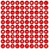 100 animals icons set red. 100 animals icons set in red circle isolated on white vector illustration Vector Illustration