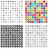 100 animals icons set vector variant. 100 animals icons set vector in 4 variant for any web design isolated on white Stock Images