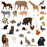 Animals 2 royalty free illustration