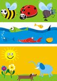 Animals illustrations set. A set of illustrations of marine life, mammals and insects Stock Images