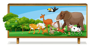 Free Animals In Jungle On Board Royalty Free Stock Photos - 26782288