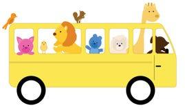Animals In School Bus Stock Image