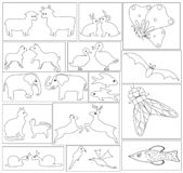 Animals and insects. Royalty Free Illustration