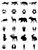 Animals and its traces siluets. A siluet set with a wild animals and its traces Stock Photo