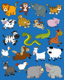 Animals - Kid drawings stock photo