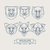 Animals linear art icons. Vector illustration Stock Image