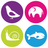 Animals logo Royalty Free Stock Image