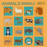 Animals mammals icon set. Vector flat style. Stock Images